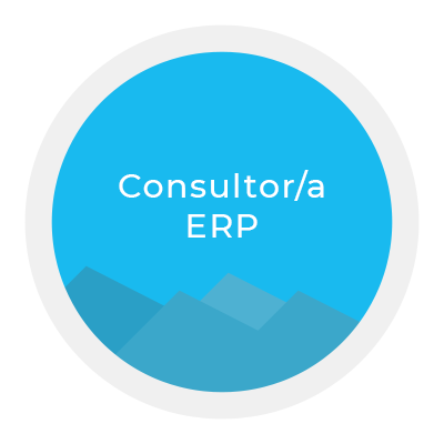 Formador Kriter ERP. Kriter software.